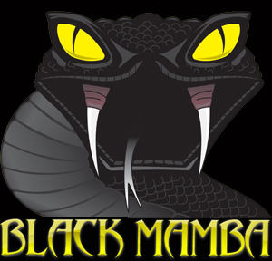 Black Mamba Square Logo